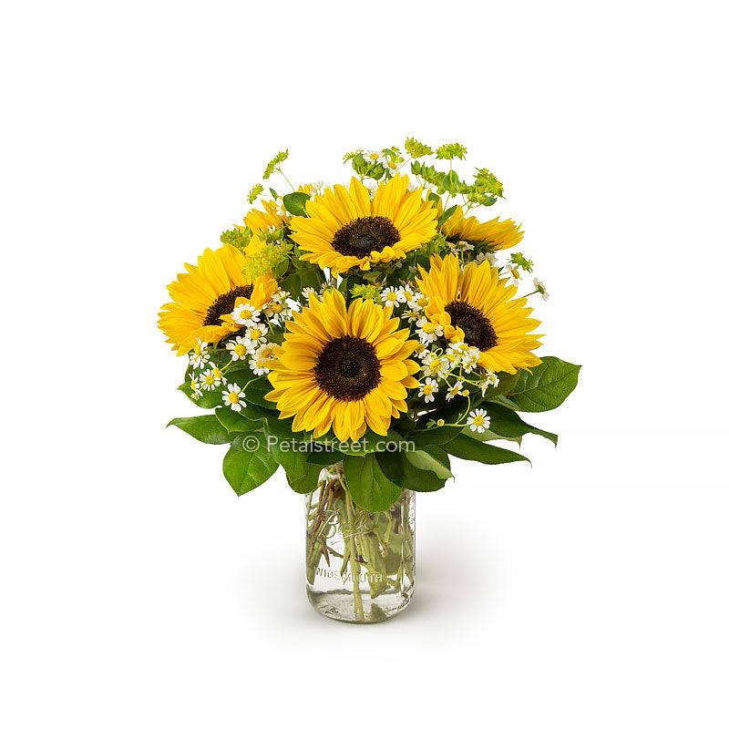 Sunflowers arranged in a mason jar with mini white flowers accents and green foliage made by Petal Street Flower Company florist