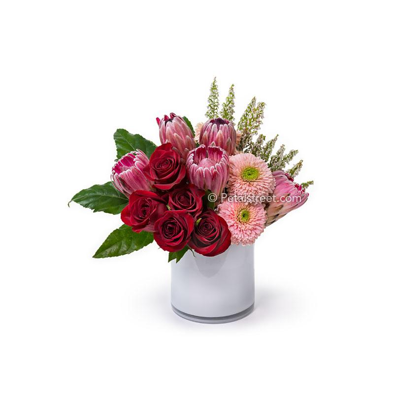 A modern floral arrangement with red Roses, Protea, Gerbera Poms, pink accent flowers, and Aralia Leaves in a white glass cylinder.