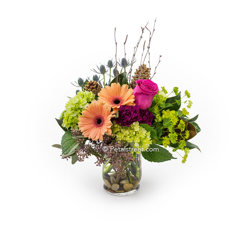 Vase arrangement by Petal Street Flower Company with peach Gerbera Daisies, mini green Hydrangea, pink Rose, and earthy Birch stick accents.