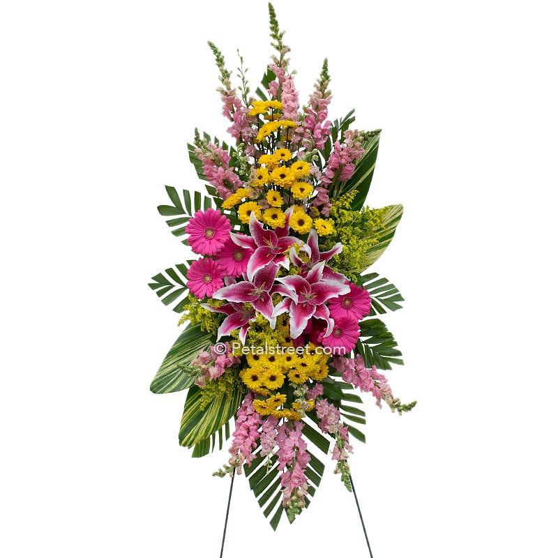 Beautiful pink Lilies and bright yellow Asters arranged in a funeral standing spray.