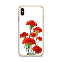 Load image into Gallery viewer, carnation flowers for sale