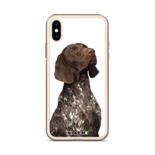 Load image into Gallery viewer, german wirehaired pointer puppies