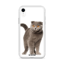 Load image into Gallery viewer, scottish fold kittens for sale