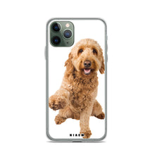 Load image into Gallery viewer, golden labradoodle