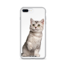 Load image into Gallery viewer, american shorthair cat