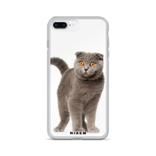Load image into Gallery viewer, kitten scottish fold for sale
