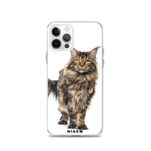 Load image into Gallery viewer, maine coon size