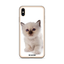 Load image into Gallery viewer, kitten ragdoll