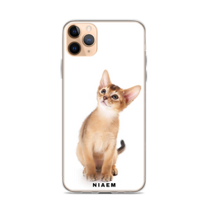 Abyssinian Cat Breed iPhone Case IV