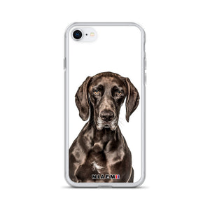 german shorthaired pointer black