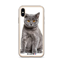 Load image into Gallery viewer, british shorthair price