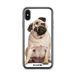 how much do pugs cost