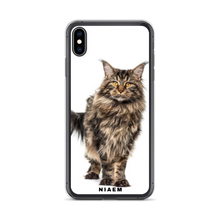 Load image into Gallery viewer, maine coon kitten sale