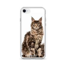 Load image into Gallery viewer, maine coon for sale