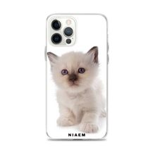 Load image into Gallery viewer, ragdoll cats for sale