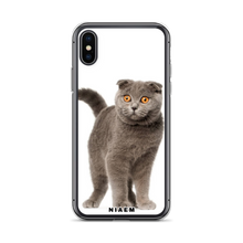 Load image into Gallery viewer, scottish fold kitten for sale