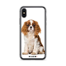 Load image into Gallery viewer, cavalier king charles spaniel puppies