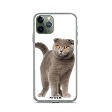 Load image into Gallery viewer, scottish fold cat price