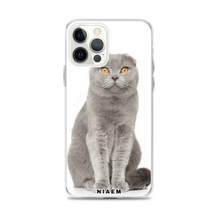 Load image into Gallery viewer, scottish fold price