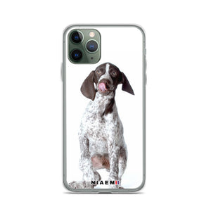 german shorthaired pointer colors