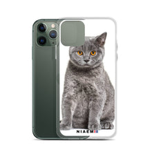 Load image into Gallery viewer, british shorthair sale
