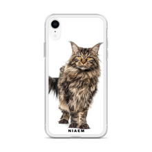 Load image into Gallery viewer, maine coon cat for sale