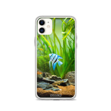 Load image into Gallery viewer, angelfish saltwater