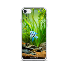 Load image into Gallery viewer, saltwater angelfish
