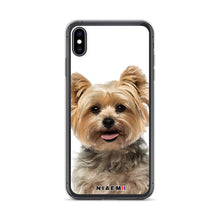 Load image into Gallery viewer, yorkie terrier mix