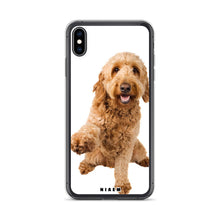 Load image into Gallery viewer, best food for goldendoodle