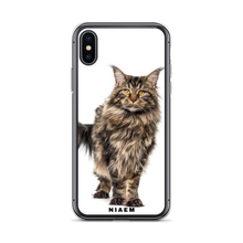 Load image into Gallery viewer, maine coon character