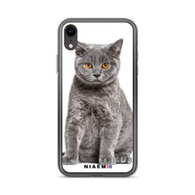 Load image into Gallery viewer, british shorthair cat price