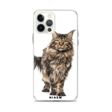 Load image into Gallery viewer, black maine coon
