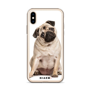 how much does a pug cost