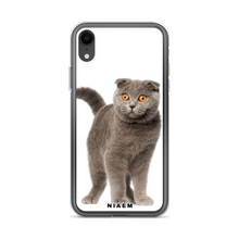 Load image into Gallery viewer, scottish fold personality