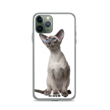 Load image into Gallery viewer, siamese kittens for sale