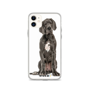 Great Dane Dog breed iPhone Case II