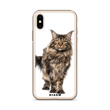 Load image into Gallery viewer, maine coon.kittens for sale
