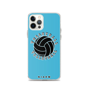 Blue volleyball iPhone 12 Pro phone cases