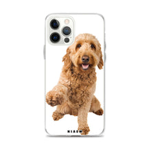 Load image into Gallery viewer, best dog food for a goldendoodle