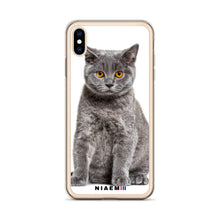 Load image into Gallery viewer, british shorthair kitten for sale