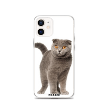 Load image into Gallery viewer, scottish fold cat for sale