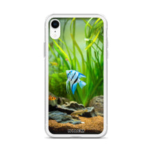 Load image into Gallery viewer, angelfish for sale