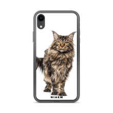 Load image into Gallery viewer, maine coon kittens sale