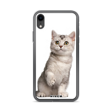 Load image into Gallery viewer, cats american shorthair