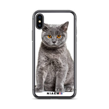 Load image into Gallery viewer, golden british shorthair
