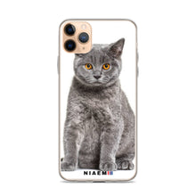 Load image into Gallery viewer, white british shorthair