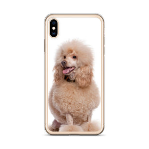 Poodle Dog breed iPhone Case II