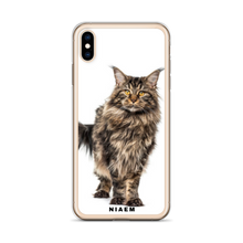 Load image into Gallery viewer, maine coon kitten for sale