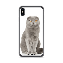 Load image into Gallery viewer, scottish fold kitten sale